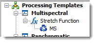 Multispectral processing template