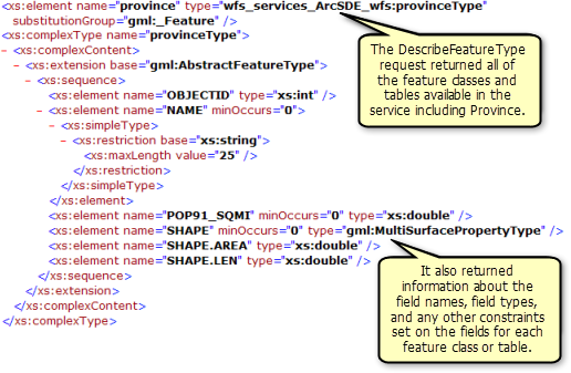 Feature classes, tables, and field information returned by the DescribeFeatureType operation