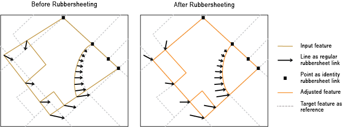 Rubbersheet Features