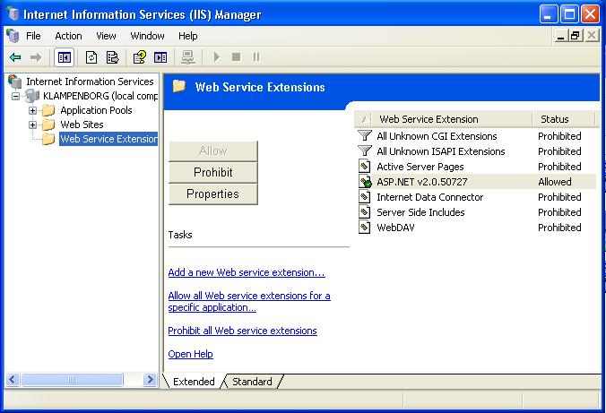 Windows XP IIS Manager window