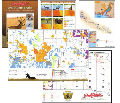 Tipos de mapas de ArcGIS | ArcGIS Resource Center